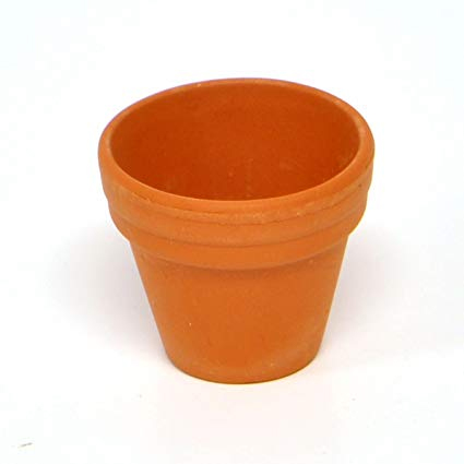 Terracotta flowerpots allow the female cichlid to hide from the male's aggression.