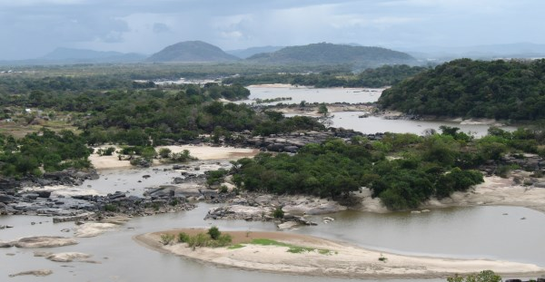The Amazon basin.