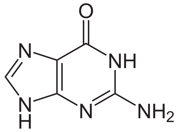 Guanine chemical compound structure.