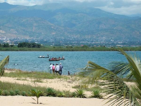 Frontosa are from lake Tanganyika