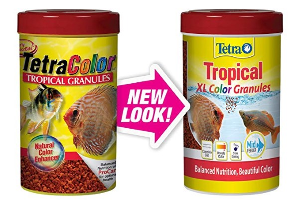 tetra color granules are a generally good food for your aquarium fish.  both your oscars and your angelfish will usually eat these.