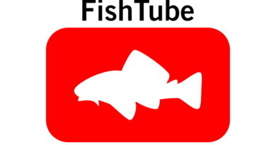 Best youtube aquarium channels