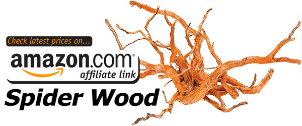 Spiderwood is a great gift for somebody who has smaller fish that can swim between the narrow branches