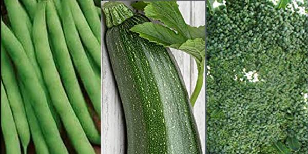 green beans zucchini broccoli