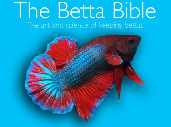 betta bible